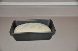 Basic White Bread After Second Rising