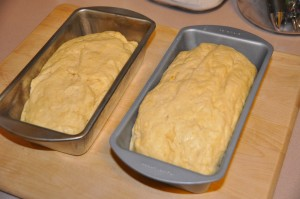 Brioche Bread Before Baking