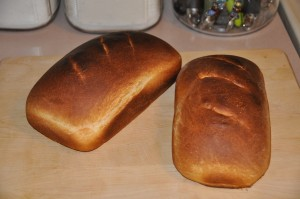 Basic Home-Style Bread