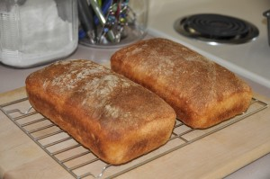 Cornmeal Bread