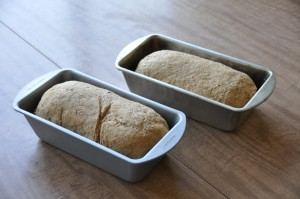 Black Bread After Second Rising