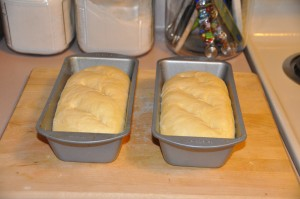 Water-Proofed Bread After Second Rising