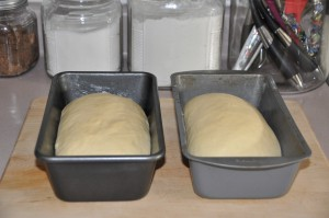 Refrigerator Potato Bread After Second Rising