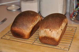 Whole-Wheat Nut Bread